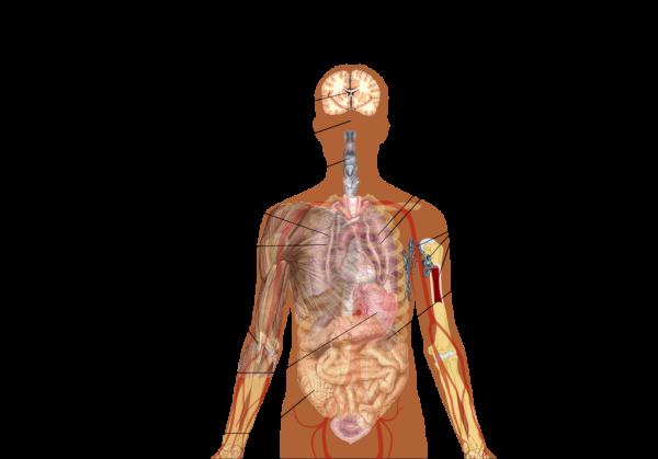 symptoms-of-covid19