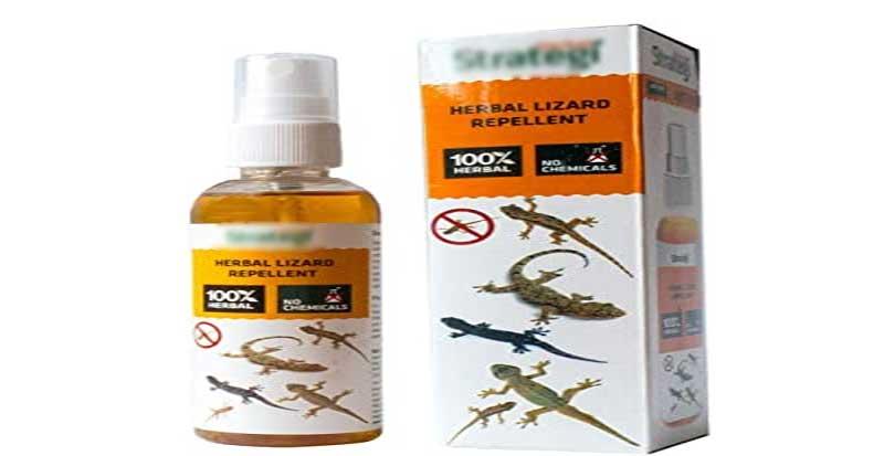 lizard-repellent-spray