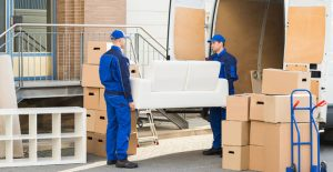 iba-approved-packers-and-movers-in-gurgaon