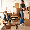 Blush Packers and Movers
