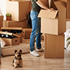 Domestic Relocation Packers